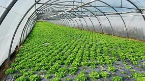 Foto de Cajamar y Fepex informan sobre los fondos Next Generation para el sector agroalimentario