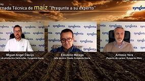Foto de Syngenta da a conocer sus nuevos herbicidas para maíz