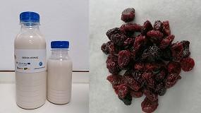Foto de Investigadores editan fichas técnicas para la elaboración de deshidratados, bebidas y snacks saludables a partir de frutas y frutos secos