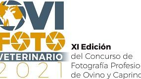 Foto de OviFoto@VETERINARIO 2021: El trabajo de los veterinari@s de ovino y de caprino visto a través de la fotografía