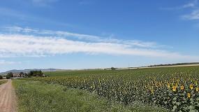 Foto de Syngenta refuerza su compromiso de mejorar la biodiversidad en 3 millones de hectáreas a nivel global