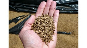 Foto de El hueso de aceituna no es un residuo