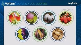 Foto de Syngenta completa con Voliam su estrategia de control de orugas y escarabajos