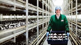 Foto de Un consorcio de centros de investigación europeos logra desarrollar bolsas de plástico, jabones y alimentos con residuos de champiñón
