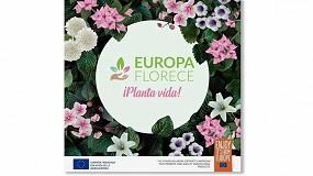 Foto de La exportación de flor y planta crece un 40% en el primer trimestre del año