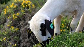 Foto de Los ganaderos de razas autóctonas de Castilla y León se distribuirán dos millones de euros