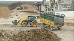 Foto de La certificación definitiva de la sostenibilidad de la biomasa para energía ya está lista en España