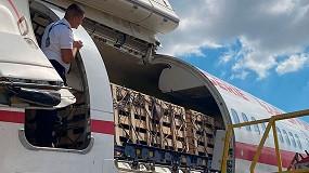 Foto de Acrimur firma un contrato para enviar a Argelia un total de 14.000 cabritas de Murciano-Granadina