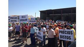 Foto de Un millar de ganaderos exigen precios justos para la leche en Belalc�zar (C�rdoba)