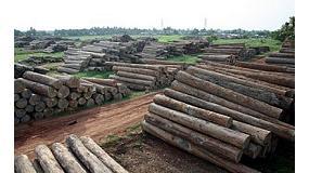 Foto de Aeim aumenta el riesgo EUTR de Myanmar