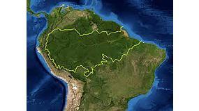 Foto de Aeim eleva el riesgo de Brasil en el sistema de Diligencia Debida (EUTR)