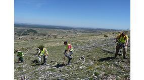 Foto de 'El Árbol es Vida' comienza mayo sembrando en zonas incendiadas de Teruel