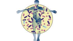 Foto de Microbiología en tapones de corcho