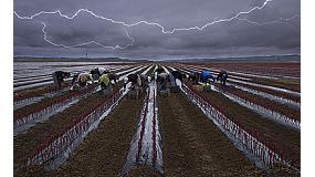 Foto de Las imágenes ganadoras de #FotoRural2014 reflejan la dureza de la actividad agraria