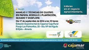 Foto de La Estación Experimental de Cajamar impartirá el taller 'Manejo y técnicas de cultivo en papaya'