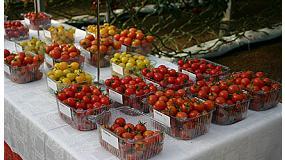 Foto de Syngenta trae a Fruit Attraction sus variedades más innovadoras para los lineales del supermercado