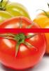 Productos Batlle: semillas mix