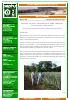 Fulvita-40, en el cultivo de piña.