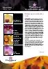 Boletín Floricultura 2012-05