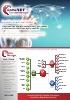 Proceso de gestión comercial en Business Manager (BM)