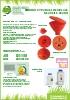 Embudos para reciclaje de aceite modelo CV