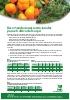 Recomendaciones nutricionales para el cultivo del Caqui (Regadío)