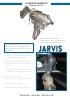 Aturdidor neumático USSS-21 - Jarvis