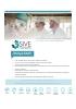 Sive fluis systems fabricantes de líneas para el tratamiento de fluidos