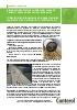 Filtros para filtración de hidrocarburos en aguas pluviales