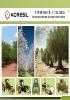 Recolección de olivar y frutos secos