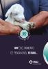 Conoce el Plan Recría 10 de MSD Animal Health