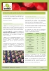 Sustrato de cultivo prodeasa rt-50 ecológico