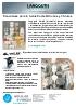 Langguth: soluciones para la industria de la pintura