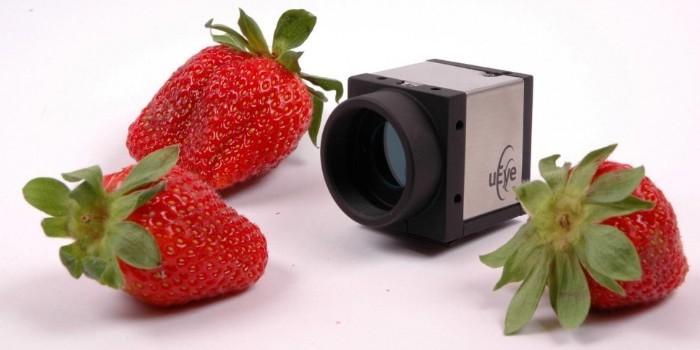 Visión artificial en la industria alimentaria