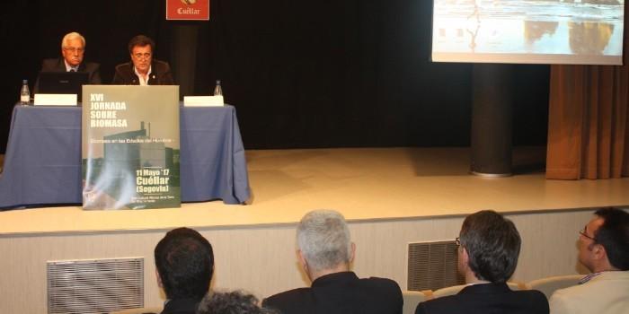 La biomasa se impone como fuente de energía entre los edificios gestionados por instituciones religiosas