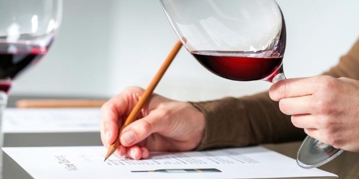 El catador como ingrediente principal en la degustación de vinos