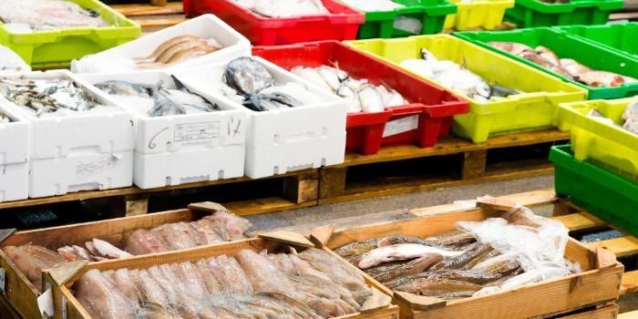 El 80% de los espa�oles preocupados con la limpieza de las cajas de pescado fresco