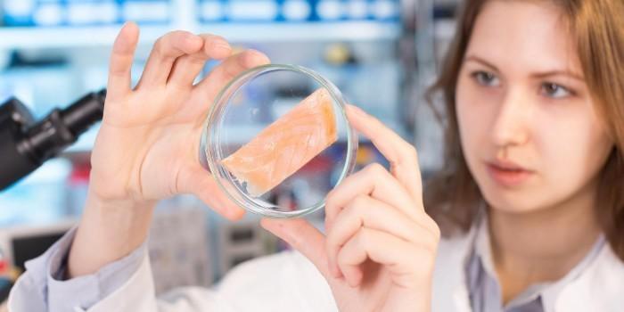 Metasafe, un nivel superior de conocimiento sobre la microbiota