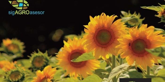 Aemet fomenta el desarrollo de productos meteorol�gicos aplicados a la agricultura