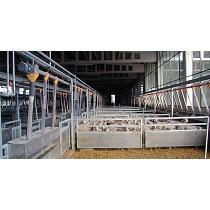 Sistemas de reparto para ovino
