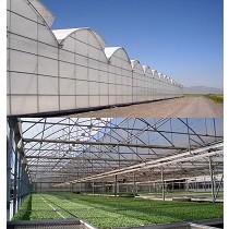 Invernadero multicapilla de techo gótico