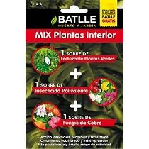 Mix plantas interior