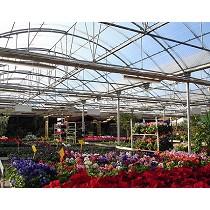 Invernaderos para centros de jardinería