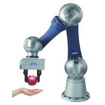 Brazos robóticos articulados