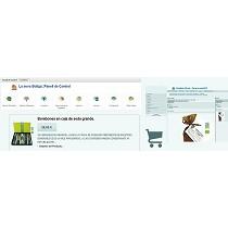 Servicios de diseño de webs y presencia en la red