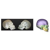Modelos de estereolitografía