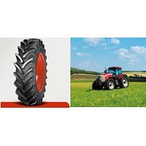 Neumáticos de perfil standard