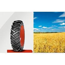 Neumáticos convencionales