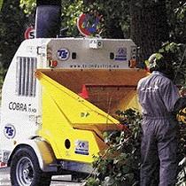 Trituradores/desfibradoras de branques i vegetals