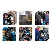 Proceso de renovado o recauchutado del neumático